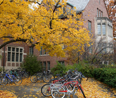 Picture of Bikes Underneath a Tree in Fall with Building, University of New England