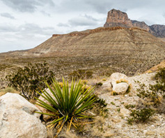 Picture of El Capitan peak in guadalupe mountains national park