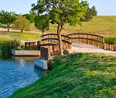 Picture of bridge in grassy meadow with tree