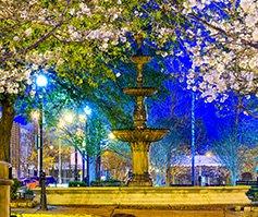 Imagen de fuente a la noche, con un marco de árboles con flores