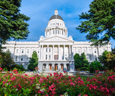 Picture of California Capitol Building with Flowers in Front