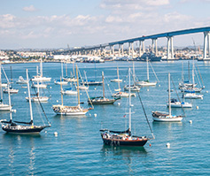 Picture of Multiple Small Sailboats at Anchor in Harbor, San Diego–Coronado Bridge