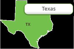 Ícono del estado de Texas